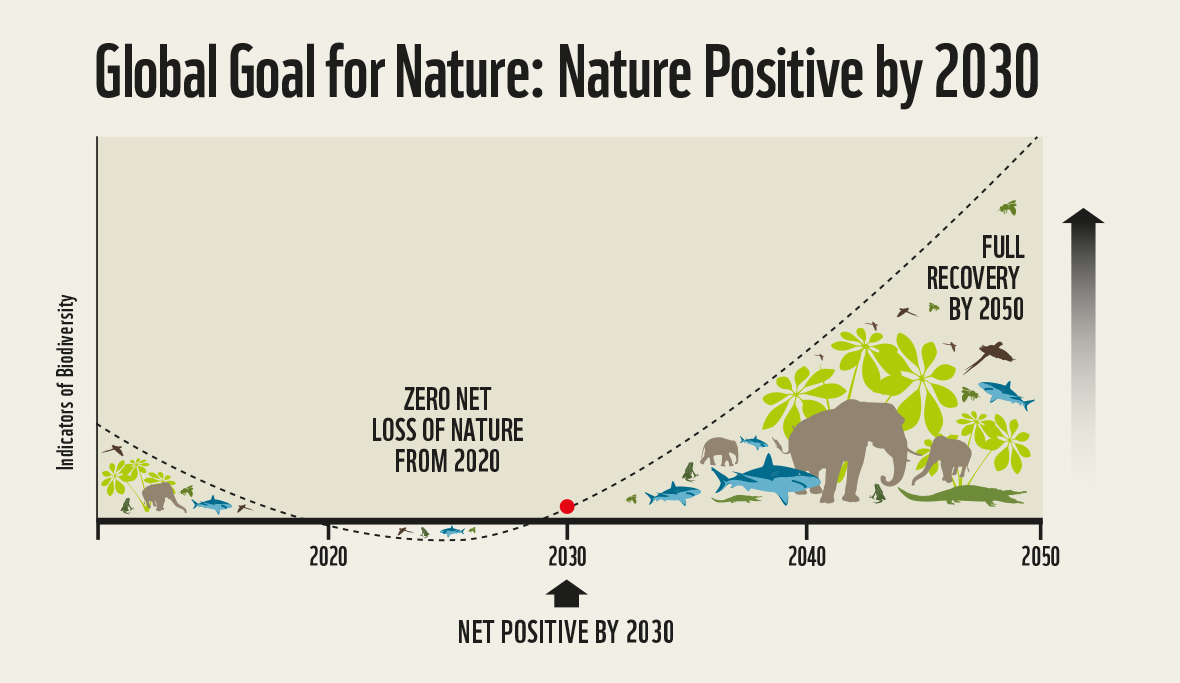 Nature Positive graph (2)